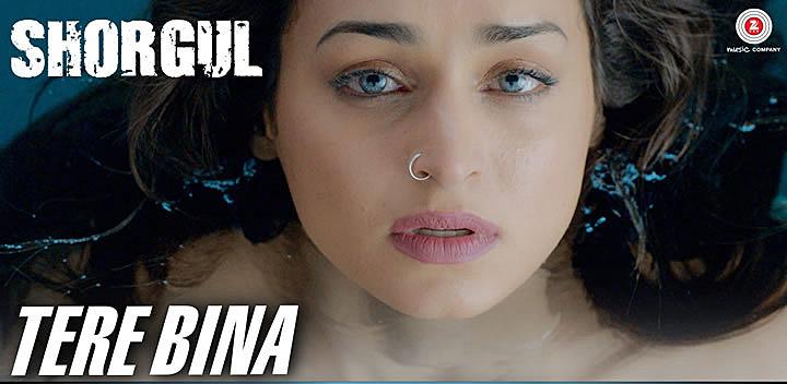Tere Bina Dil Na Lage Mp3 — Minutemanhealthdirect